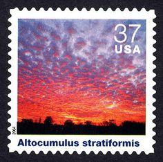 37c Altocumulus Stratiformis single