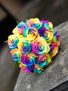 Rainbow Rose is a single rose with multiple color petals.Each petal has different color.These are multi-colored roses which look like a rainbow colors Rainbow Bouquet, Rainbow Flowers, Pretty Flowers, Church Wedding Flowers, Wedding Bouquets, Rainbow Wedding, Colorful Roses, Rose Bouquet, Boquet