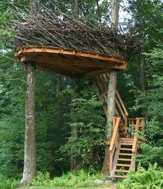 When a tree house is an art project as well.