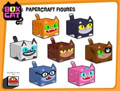 box cats all
