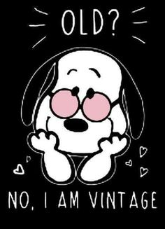 Ideas Funny Happy Birthday Friend Quotes I Am Snoopy Love, Charlie Brown And Snoopy, Snoopy And Woodstock, Peanuts Gang, Peanuts Cartoon, Peanuts Quotes, Snoopy Quotes, Happy Birthday Friend, Birthday Wishes