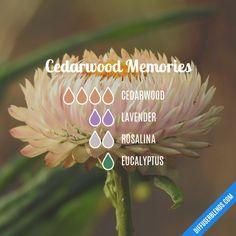Cedarwood Memories - Essential Oil Diffuser Blend