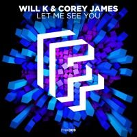 WILL K & Corey James - Let Me See You [OUT NOW!] by Fonk Recordings on SoundCloud