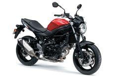SV650 - Gallery | Suzuki Motorcycles