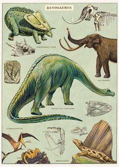 Vintage Dinosaurs Poster