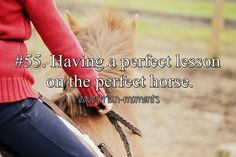 Having a perfect lesson on the perfect horse.