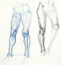 figuredrawing.info_news: Additional Leg Examples