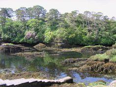 Glengarriff on the Beara Peninsula, County Cork, Ireland --> http://tourireland.com/database/?item=640