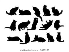 Illustration about Fifteen black cat s silhouettes on a white background. Illustration of image, funny, silhouette - 2679607 Black Cat Silhouette, Silhouette Art, Cat Quilt Patterns, Black Cat Tattoos, Cat Whisperer, F2 Savannah Cat, Cat Vector, Stock Foto, Cat Art