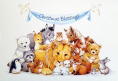 "Lion & Lamb Christmas card by Image Arts. Inside message = ""Wishing you a season of gentle joys and gentle peace."""