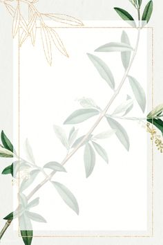 Flower Background Wallpaper, Beige Background, Flower Backgrounds, Background Patterns, Instagram Background, Frame Clipart, Pattern Illustration, Digital Illustration, Frame Wreath