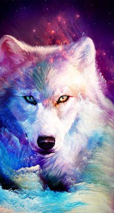 Ideas For Wallpaper Galaxy Wolf wallpaper 820710732077631336 Cute Animal Drawings, Cute Drawings, Colorful Animals, Cute Animals, Wolf Craft, Galaxy Wolf, Wolf Artwork, Wolf Painting, Fantasy Wolf