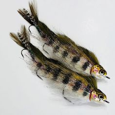 "The 6 1/2"" Juvenile Trout ""Fly*"" is A big fish streamer that is still very castable with a fast action 7wt although an 8wt is preferable. (… Fishing Signs, Fishing Lures, Fishing Boats, Pike Flies, Gone Fishing, Fish Patterns, Big Fish, Fishing Supplies, Streamers"