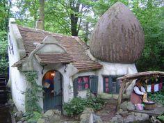 tiny mushroom house!