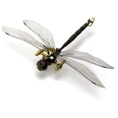 Unique Steampunk Insects ❤ liked on Polyvore featuring steampunk, filler, animals and steam punk