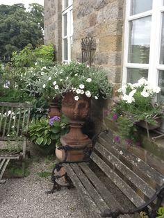 Terracotta urns Urn, Terracotta, Garden Landscaping, Gardens, Patio, Landscape, Space, Outdoor Decor, Plants