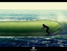 prefect! the wave, the timing, the shot!