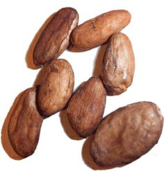 Raw Cacao beans: THE healing component of chocolate, full of antioxidants and longevity-promoting compounds. A very bitter nut when eaten in it's raw and natural form. There is no sugar or fat here, this is the real deal. Another good trail mix addition. Cacao Chocolate, Healthy Chocolate, Cocoa Nibs, Cacao Beans, Candida Diet, Raw Cacao, Natural Medicine, Superfoods, Natural Remedies
