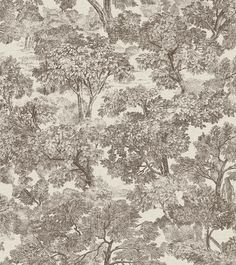Classic meets modern in the toile tree wallpaper. The black and beige color palette has a fresh look that accentuates the intricate print. Grey Toile Wallpaper, Cottage Wallpaper, Luxury Wallpaper, Tree Wallpaper, Wallpaper Samples, Wallpaper Roll, Pattern Wallpaper, Modern Wallpaper, Traditional Home Offices