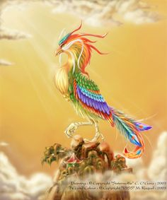 since i was born under the fire rooster sign and it also reminds me of a phoenix