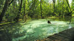 10 lugares em SP com águas cristalinas para aproveitar neste verão