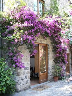 Best Activities and Things to do in Sorrento, Amalfi Coast and Naples, Italy Beautiful Gardens, Beautiful Flowers, Beautiful Places, Sorrento Italy, Italy Italy, Amalfi Coast, Garden Landscaping, Garden Design, Scenery