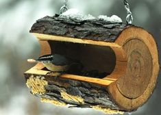 Our nuthatches would be so happy!