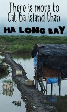 How to get to Cat Ba island in Ha Long Bay by yourself on the cheap instead of taking some expensive tour.