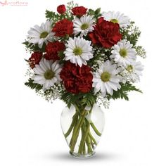 Send thank you flowers today in USA. Explore our beautiful thank you flower arrangement to pick the best you want. Valentine Flower Arrangements, Valentines Flowers, Beautiful Flower Arrangements, Floral Arrangements, Beautiful Flowers, Unique Flowers, Fresh Flowers, Valentine Gifts, Online Flower Shop