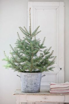 "Love This!! I actually have 3 small (12""tall) trees in metal buckets and I have a couple 3 foot tall trees that I typically place on either side of the deck door. Will send pictures of them tomorrow. #Trees"