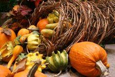 November Food Festival Menu