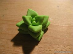 Tutorial - succulents, part 1 of 3