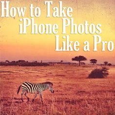 Great tips on how to take awesome iphone photos from a professional photographer - good since poor Anna ends up w so many iPhone photos!