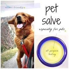 Pet-Salve2 Natural Salve for your puppy's paws when the weather is cold and dry.