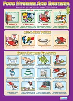 Food Hygiene and Bacteria Poster