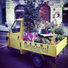 Marni Flower Market | Designed for Living | we've got style in store