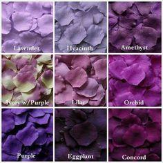 Eggplant or Amethyst or Purple