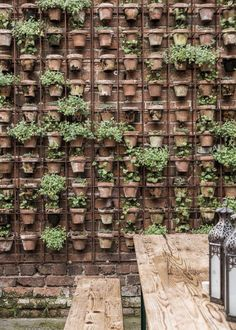 Gridded wall with potted plants