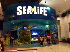 Orlando SeaLife Aquarium em Orlando, FL