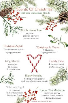 Young Living Essential Oils: Scents of Christmas Diffuser Blends Essential Oils Christmas, Yl Essential Oils, Essential Oil Diffuser Blends, Young Living Essential Oils, Pine Essential Oil, Perfume Diesel, Illustration Noel, Christmas Scents, Diffuser