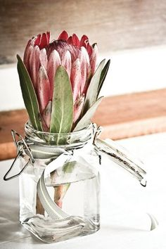 Simple glass jar with pink protea flower. Idea and inspiration for wedding table decor and table centerpieces.