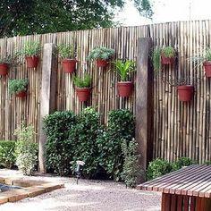 espaço verde no muro de madeira