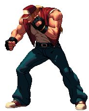 Terry Bogard Animations