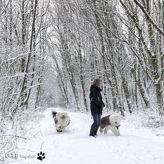 https://flic.kr/p/RAc2VL | winter fun