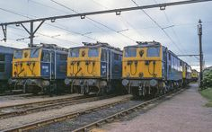 76016 and 76033 at Rotherwood Sidings on June taken 6 weeks before the end for the locos, Stabling point and MSW electrified route. Electric Locomotive, Diesel Locomotive, The Locos, Union Pacific Train, Uk Rail, Train Pictures, Electric Train, British Rail, Old Trains
