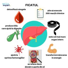 FICATUL și suplimentele alimentare - Servus Expert Playing Cards, Health, Medicine, Diet, Anatomy, Biology, Health Care, Salud, Cards
