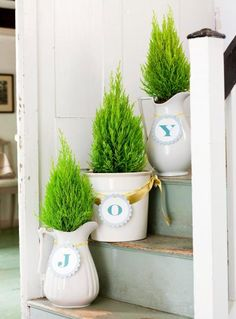 Spell out holiday greetings on tree containers. Click for more quick and easy Christmas decorating ideas.
