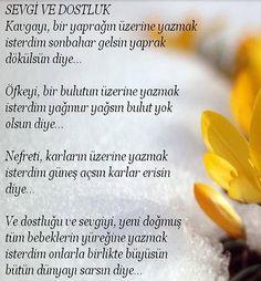 Resimli şiir