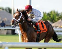 Liam's Map completed a perfect afternoon for trainer Todd Pletcher and did so in courageous fashion, surviving a stretch-long duel with the more experienced Valid to register a well-deserved half-length victory in Saturday's $100,000 Harlan's Holiday at Gulfstream Park. 12/13/14