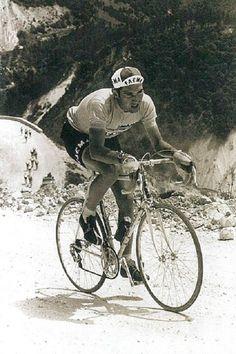 ......Merckx on the Strada Bianchi, Giro